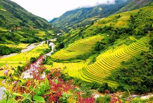 Thắng cảnh Việt Nam