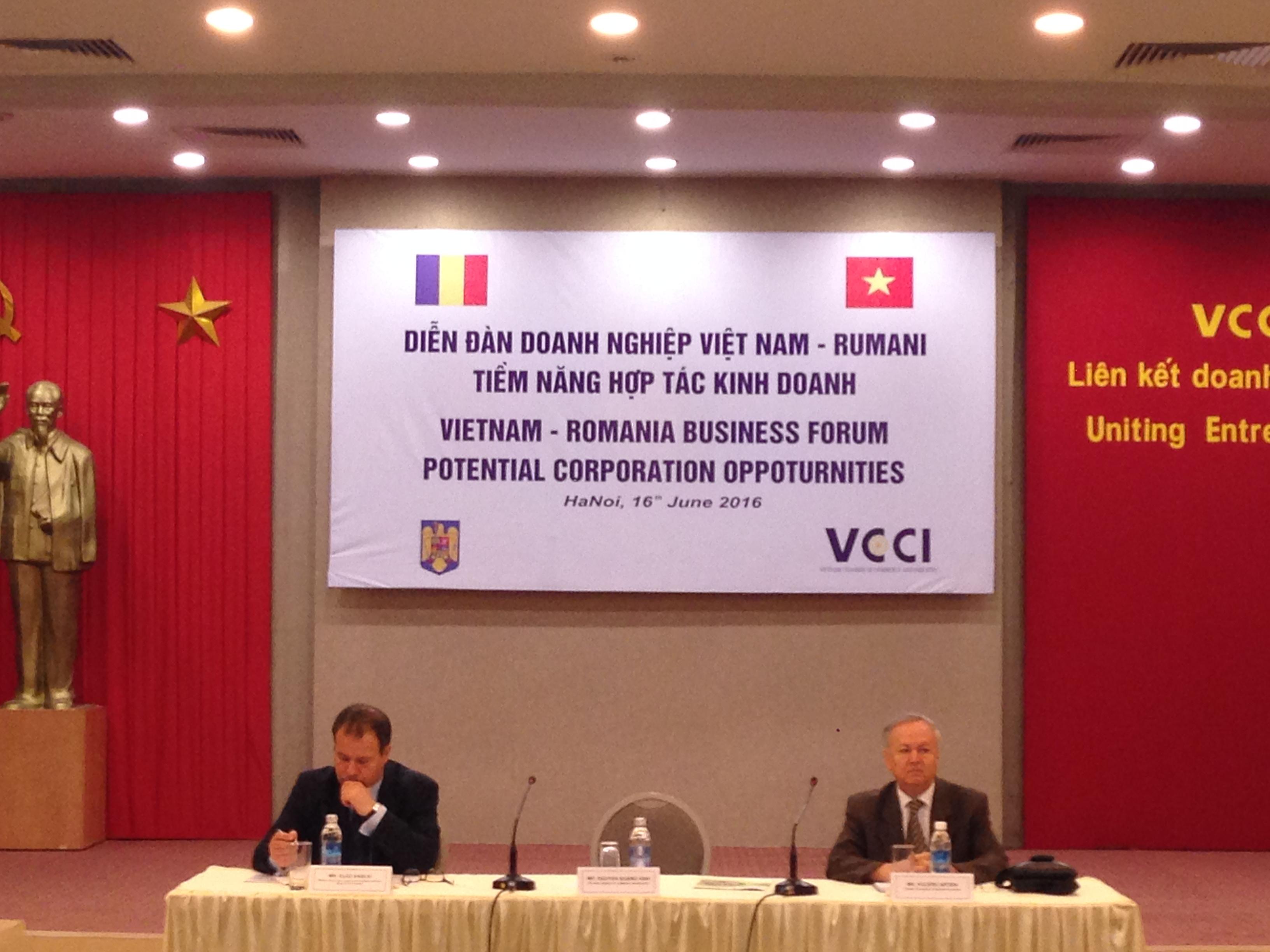 Hội thảo Diễn đàn Doanh nghiệt Việt Nam-Rumani (16/6/2016)